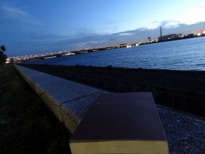 大好きな場所で本を読む